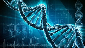 ADN, Síndrome de Angelman, Apadrina un Ángel